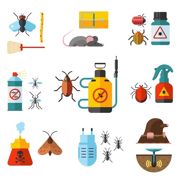 Home pest control expert exterminator service Premium Vector
