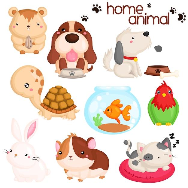 Home pet animals Premium Vector