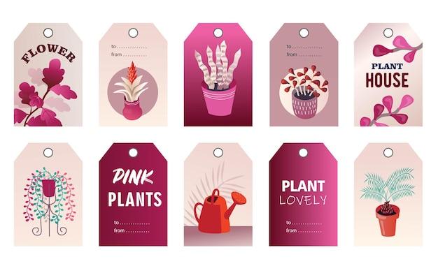 Set di tag di piante domestiche Vettore gratuito
