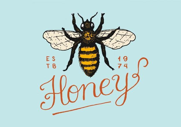 Мед и пчелы. винтажный логотип для типографии, магазина или вывесок. Premium векторы