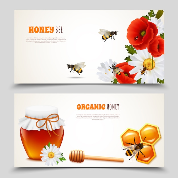 Honey banner set Free Vector
