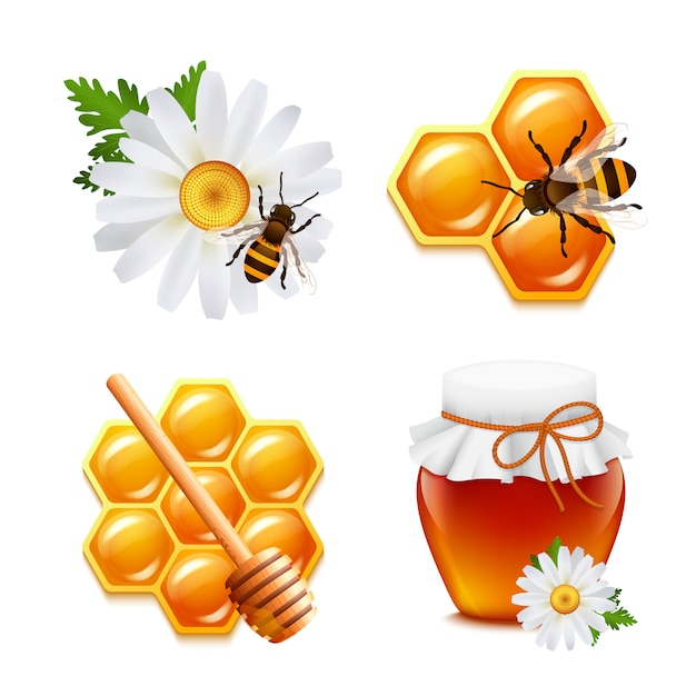 Honey food elements set with daisy bumblebee honeycomb isolated vector illustration Free Vector