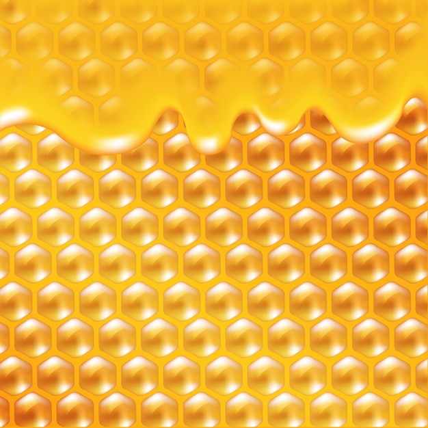 蜂蜜ポスターグラデーションメッシュ、イラスト Premiumベクター