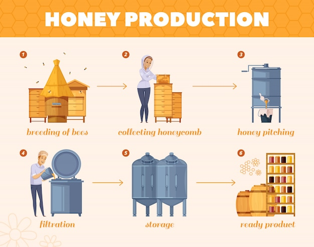 Diagramma di flusso di honey production process cartoon Vettore gratuito