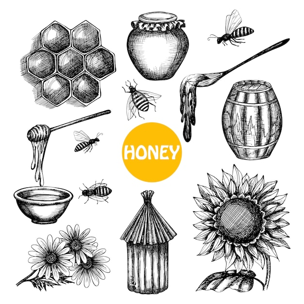 Honey set black hand drawn doodle Free Vector