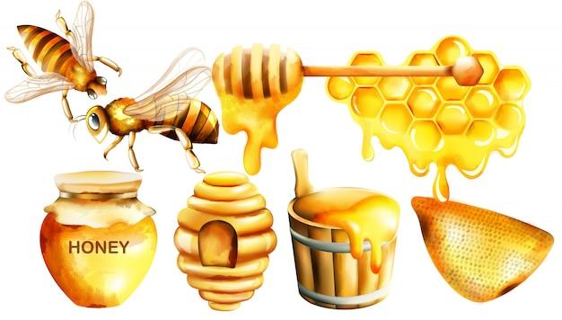 항아리, 국자, 꿀벌, 벌집, 집 및 양동이와 꿀 수채화 세트 무료 벡터