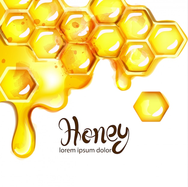 Honeycomb and bees watercolor Premium Vector