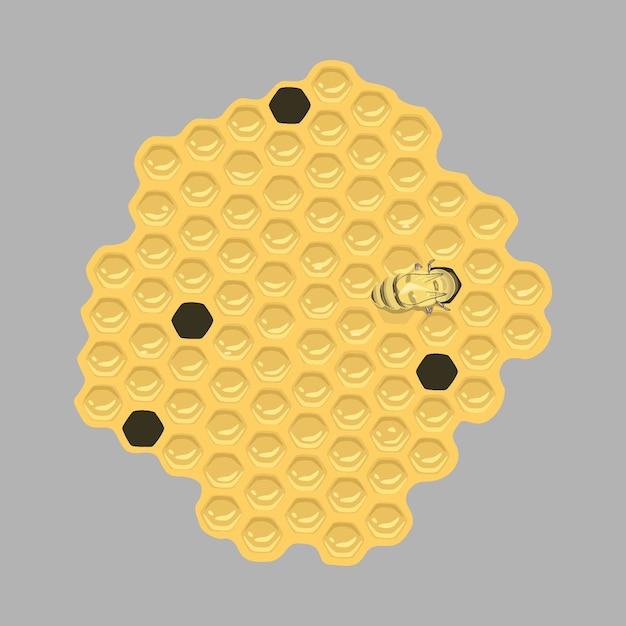 Honeycomb flat Premium Vector