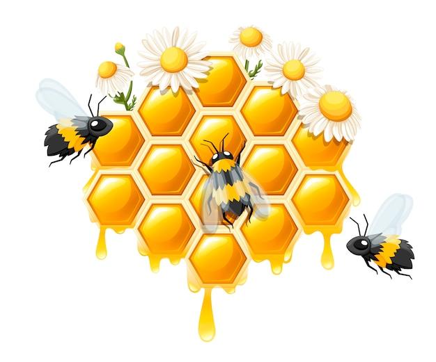Соты с медовыми каплями. сладкий мед с цветком и пчелами. логотип для магазина или пекарни. иллюстрация на белом фоне Premium векторы