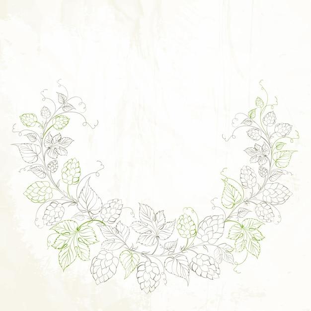 Luppolo con foglie isolato su bianco Vettore gratuito