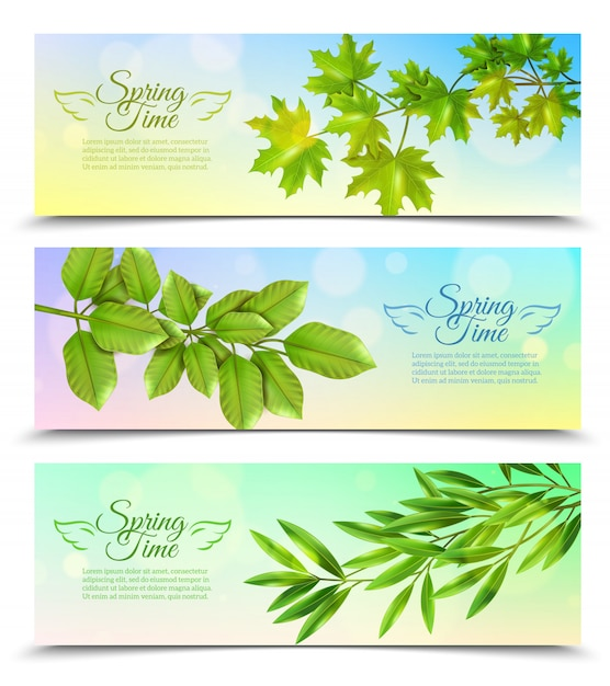 Horizontal banners set with green branches Free Vector