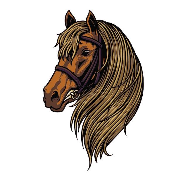 Horse head illustration Premium Vector