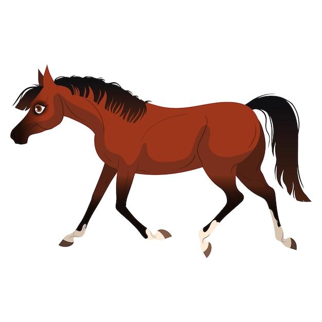 馬の走り Premiumベクター