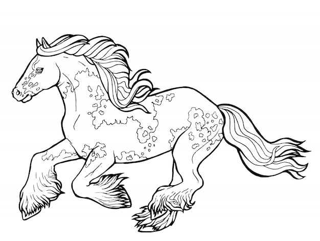 Horse Runs Trot Coloring Book The Horse Runs Trot Coloring Book