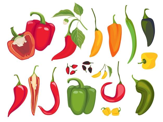 Острый перец. мексиканский чили свежие вегетарианские блюда специи перец кайенский экзотические продукты Premium векторы