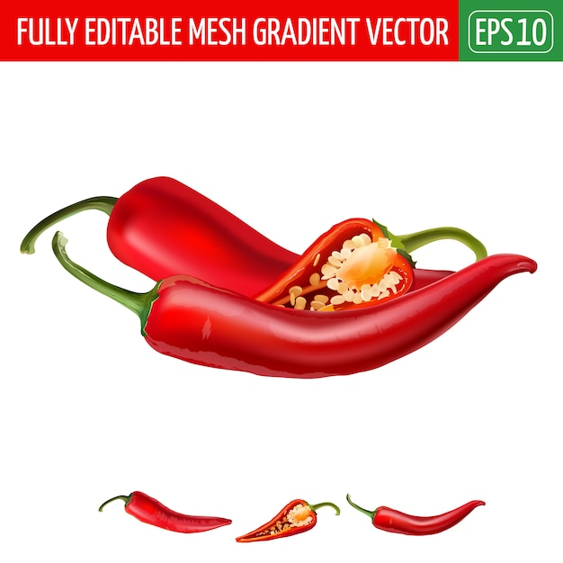 Hot red chili peppers illustration on white Premium Vector
