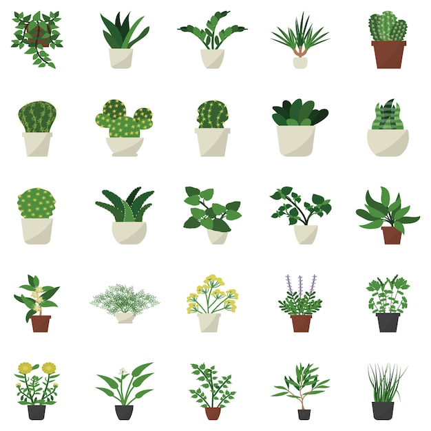 Houseplant decor flat icons Premium Vector