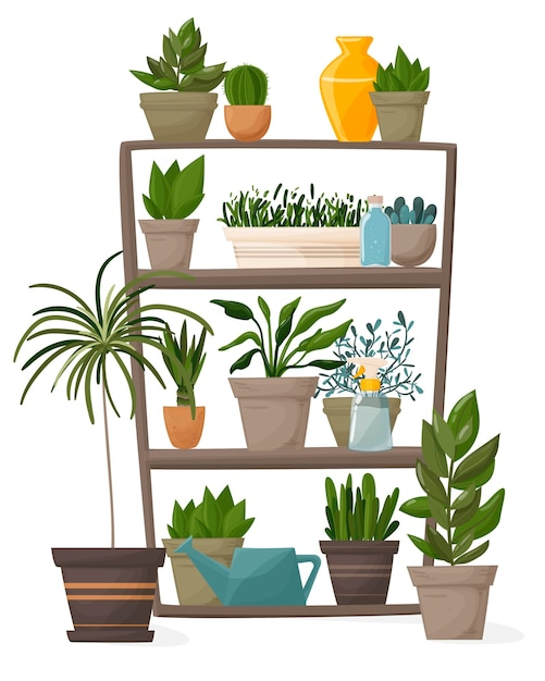 Комнатные растения и декоративные цветы в горшках на полках. Premium векторы