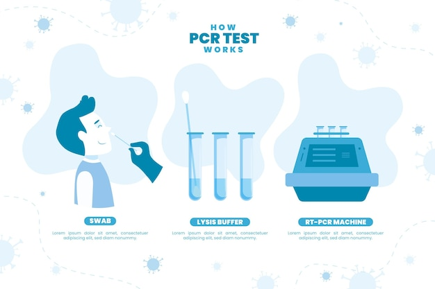 How pcr test works illustrated Free Vector