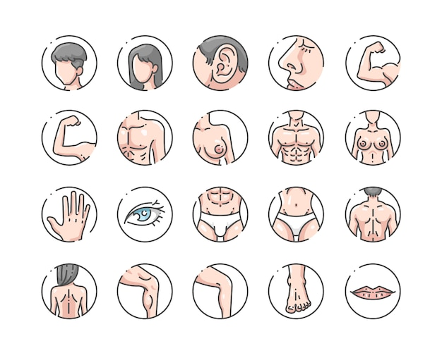 Human body outline color icons set Premium Vector