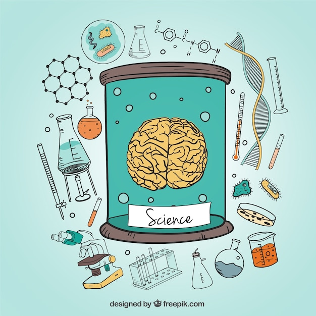 Human brain and science icons illustration  Free Vector