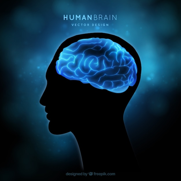 Human brain on a blue background Free Vector