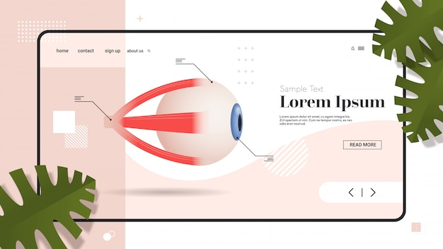 Human eye icon internal organ structure detailed eyeball medical healthcare anatomy biology concept flat copy space horizontal Premium Vector