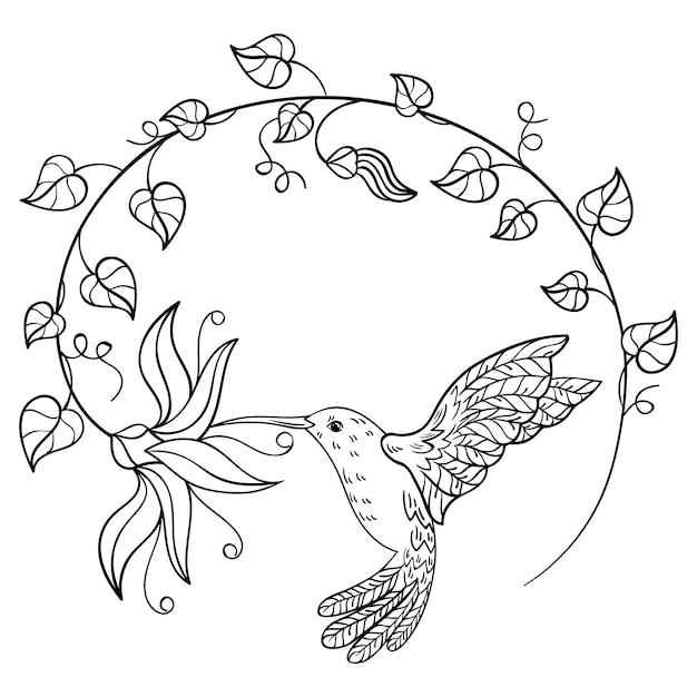 Колибри пьет нектар из цветка. летящий колибри, вписанный в круг цветов. Premium векторы