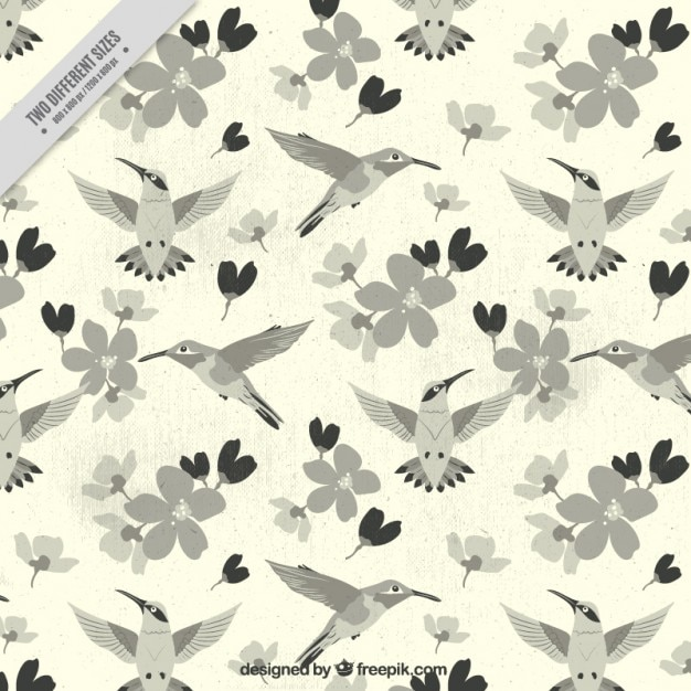 Hummingbird and flowers background in vintage style Free Vector