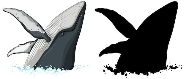 ザトウクジラのキャラクターと白い背景のシルエット 無料ベクター