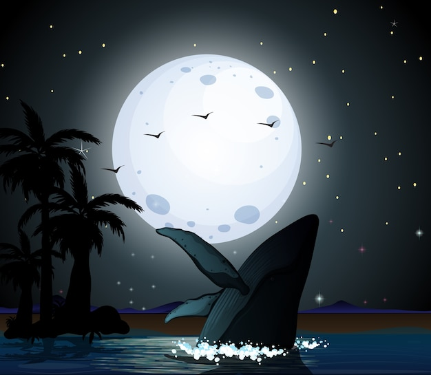 Горбатый кит в силуэт сцены природы Бесплатные векторы