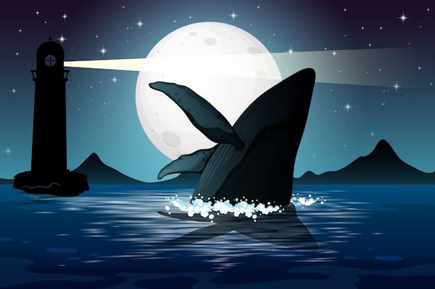 Humpback whale in nature scene silhouette Premium Vector