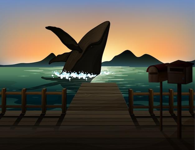 Humpback whale in natura scena silhouette Vettore gratuito