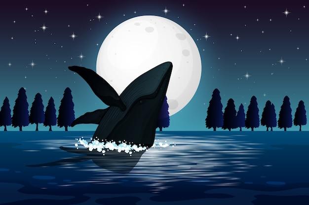 Humpback whale in nature scene silhouette Free Vector