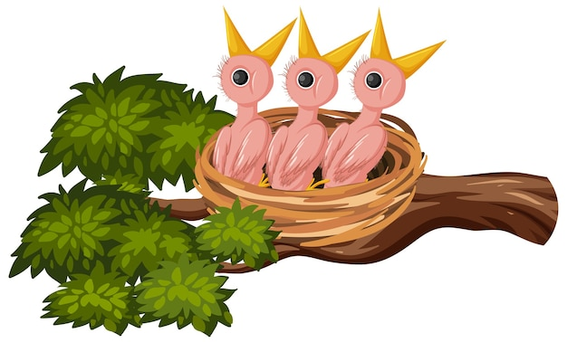 Hungry chicks on the nest Premium Vector