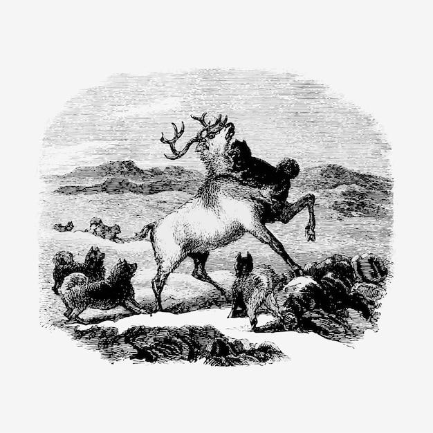 Hunting reindeer Free Vector