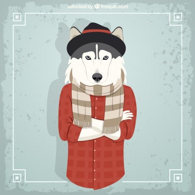 Husky fashion model