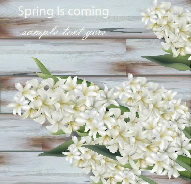 Hyacinth white flower bouquet background Vector | Premium Download