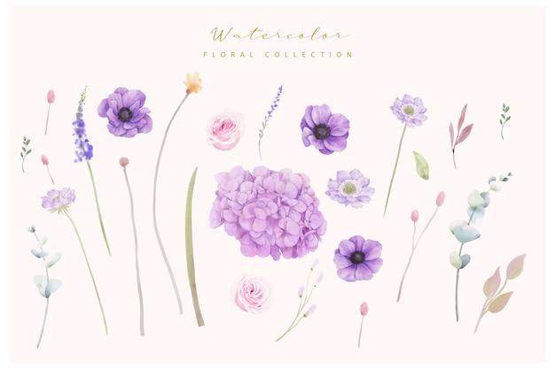 あじさいとアネモネの花のコレクション Premiumベクター