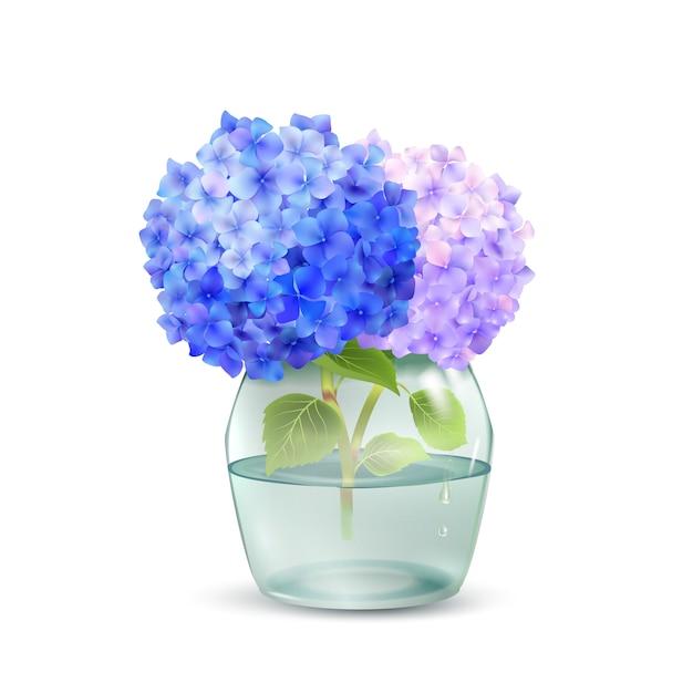 Ortensia in vaso Vettore gratuito