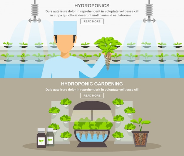 Hydroponic design banner Free Vector
