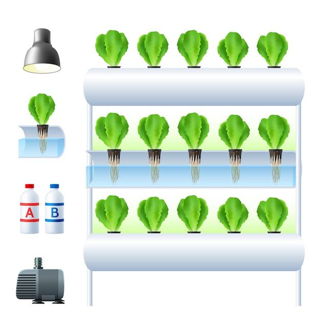 Hydroponics system illustration Free Vector