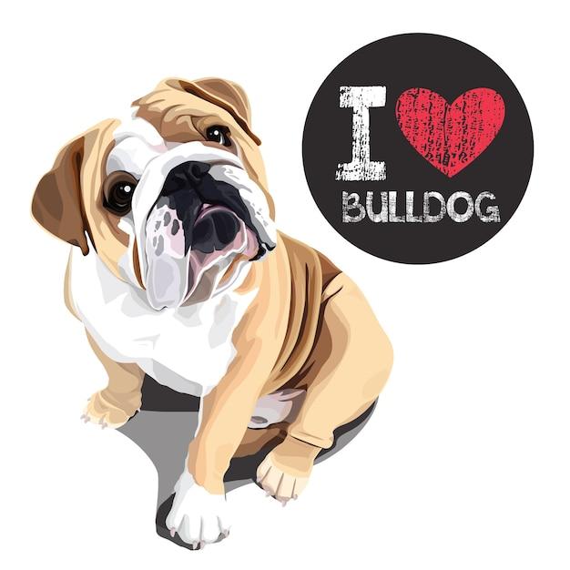 I love bulldog Premium Vector