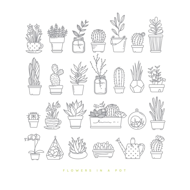 Icon flat set plants in pots drawing on white background. Premium Vector