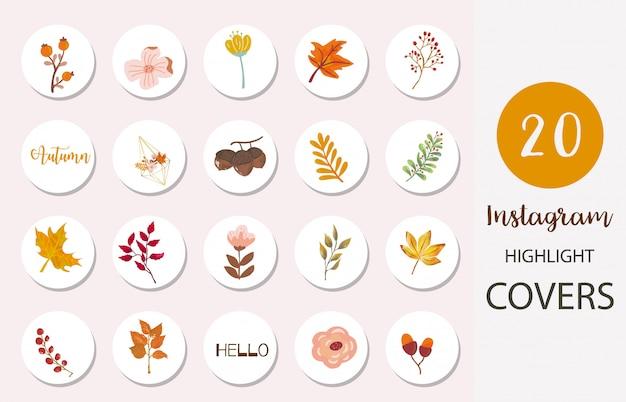 잎과 견과류와 함께 Instagram 하이라이트 커버의 아이콘 세트 프리미엄 벡터