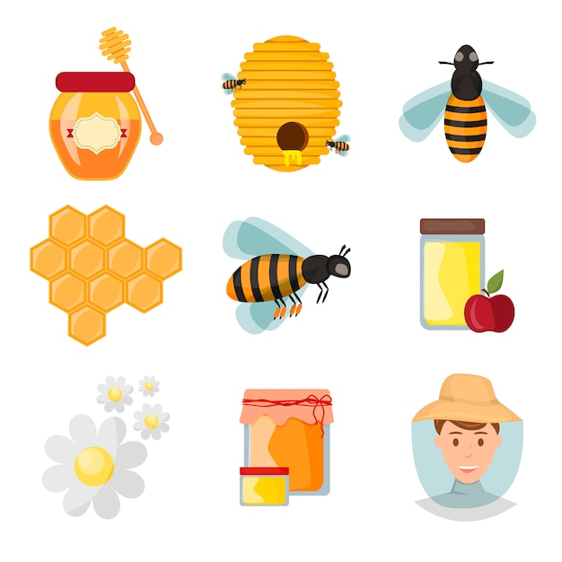 Icons apiaries and bee vector. Premium Vector