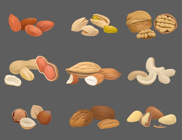 Icons set with various kinds of nuts walnut, pistachio, brazil, almond, peanut, cashew, hazelnut and pecan. organic and healthy food. tasty snack. vegan food Premium Vector