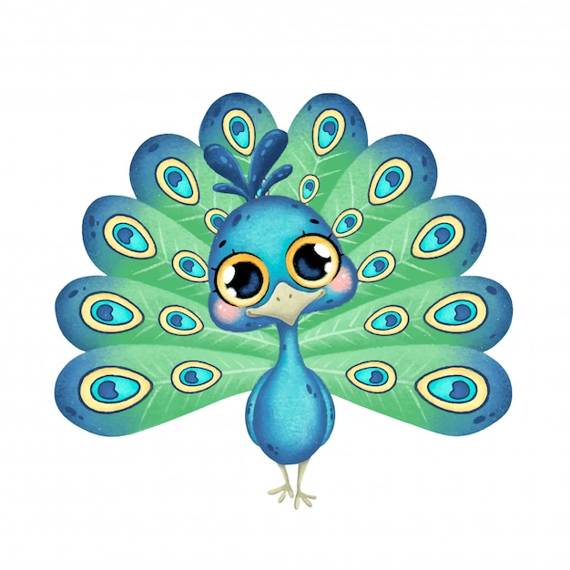 premium vector illustration of a cute cartoon peacock with big eyes isolated https www freepik com profile preagreement getstarted 8822093