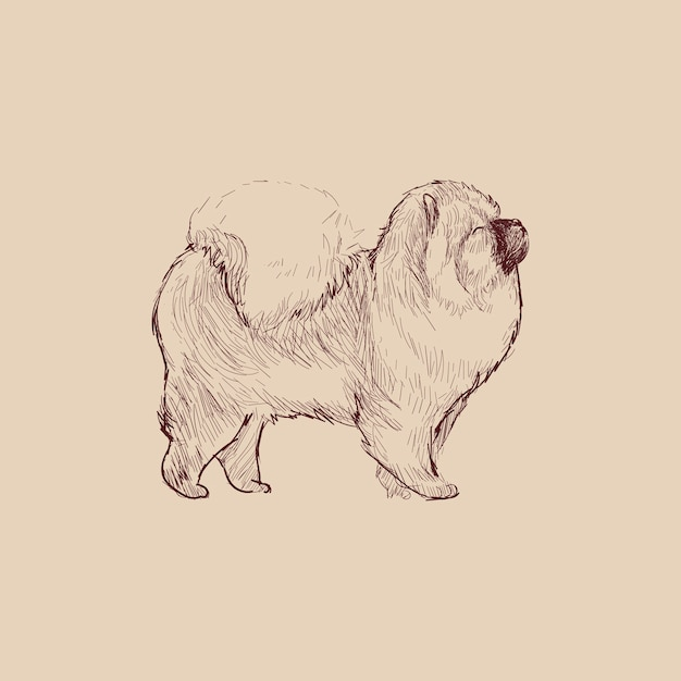 Illustration Drawing Style Of Dog Premium Vector