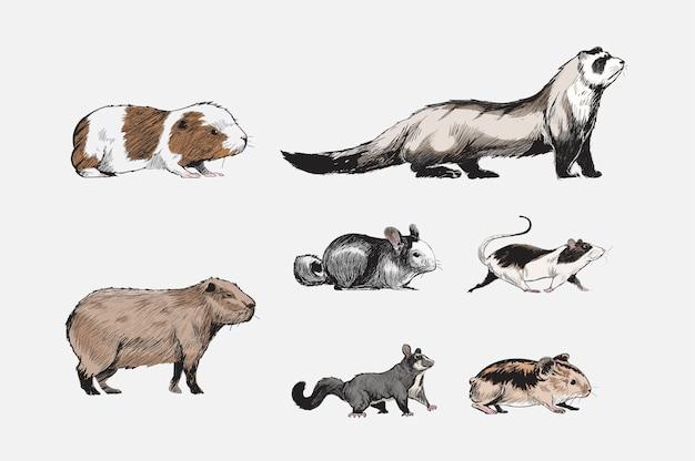 Стиль рисунка рисунка коллекции животных Бесплатные векторы